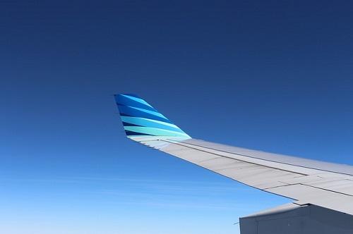 wing-221525_640
